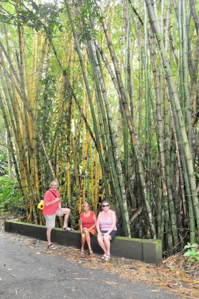 Big Bambu in Trinidad